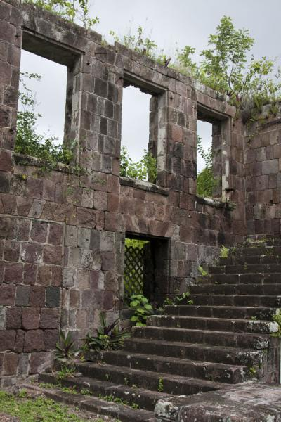 Ruins of building at the Old Manor estate | Nevis plantages | St Kitts en Nevis