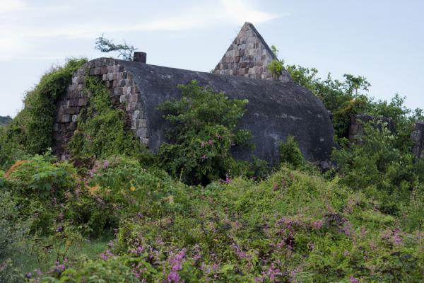 Foto di Old stone building on the New River estate on the east coast of Nevis island - St. Kitts e Nevis - America