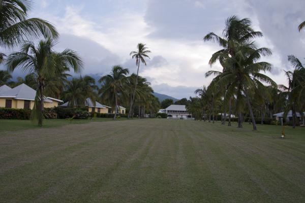 Picture of Nevis Plantations (Saint Kitts and Nevis): The extensive lawn at Nisbet Plantation where many small trees were planted by newly weds