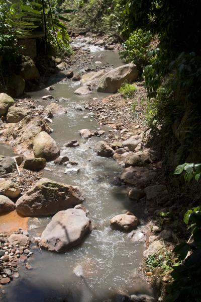 Foto de Stream coming down from the Diamond waterfallDiamond Botanical Garden - Santa Lucia