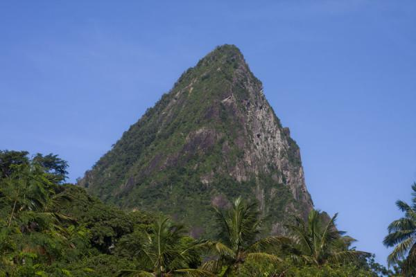 Foto de Petit Piton is a volcanic cone rising steeply from the surrounding landscapePetit Piton - Santa Lucia