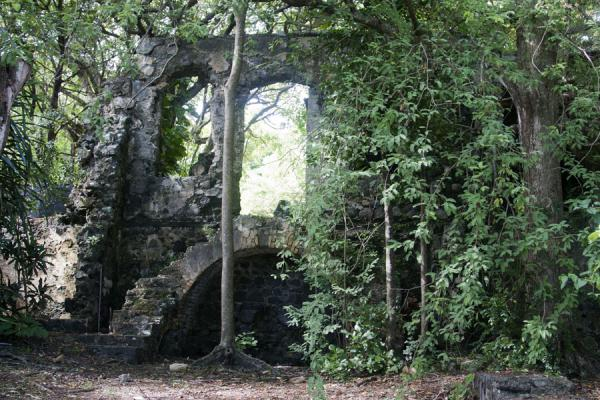 Ruins of a colonial building constructed by the English | Pigeon Island | Sainte Lucie