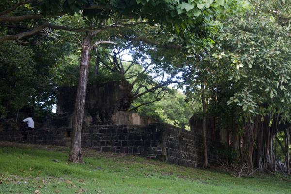 Ruins of an old building on Pigeon Island | Pigeon Island | 圣卢西亚