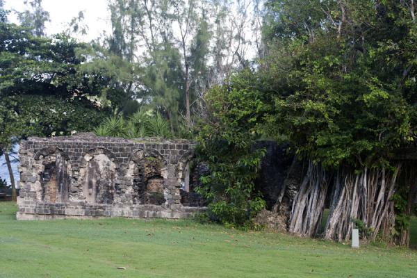 Ruins of barracks once used by the English | Pigeon Island | 圣卢西亚