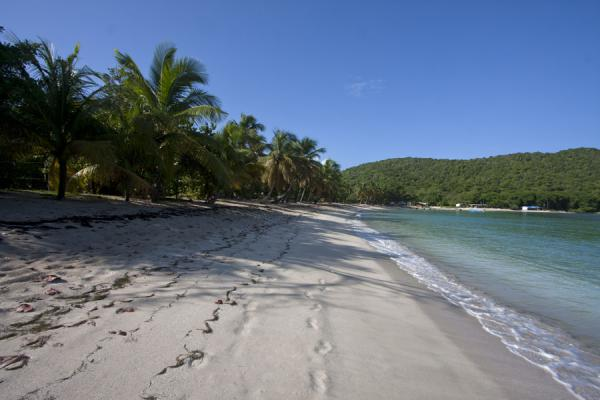 Foto van Sandwhistle Beach consists of fine sand and a tranquil sea - Saint Vincent en de Grenadines - Amerika