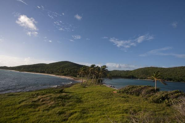 Foto van On the left, the Caribbean sea, on the right, Sandwhistle BayMayreau - Saint Vincent en de Grenadines