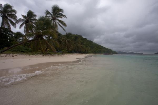 Picture of Tobago Cays (Saint Vincent and the Grenadines): Beach on Petit Bateau island under a cloudy sky