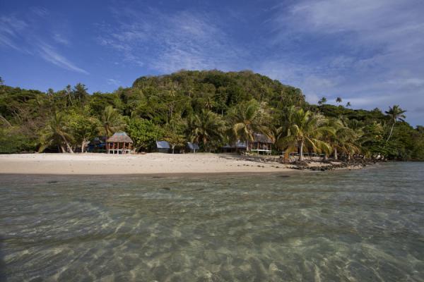 Picture of Namua island (Samoa): Sandy beach and tree-covered hill of Namua island