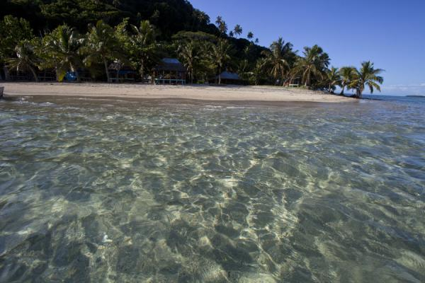 Picture of Namua island (Samoa): Looking at the beach of Namua island from the clear waters surrounding the island