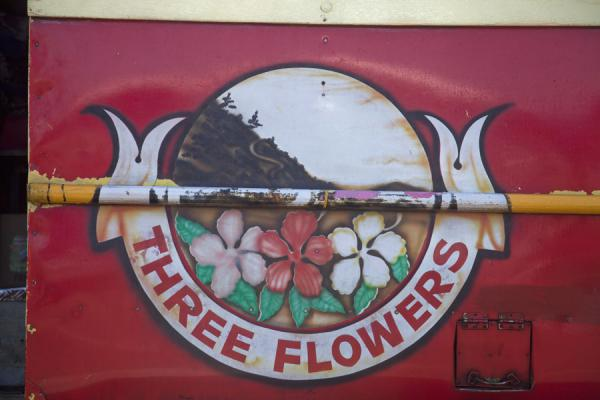 Picture of Samoan buses (Samoa): Frangipani flowers painted on the side of a bus