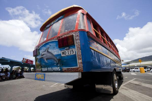 Picture of Samoan buses (Samoa): Bus with dolphin painted on the back waiting for departure at Apia bus station