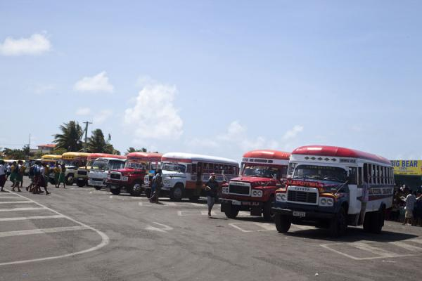 Picture of Samoan buses (Samoa): Buses lined up at the bus station in Apia