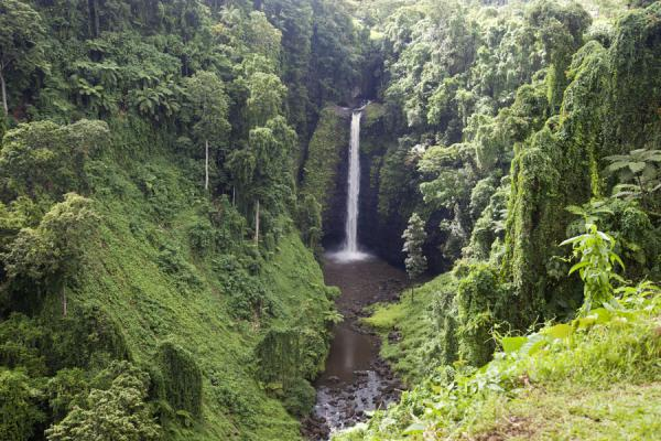 Picture of Samoan waterfalls (Samoa): Sapoaga waterfall in the middle of the rainforest of Upolu