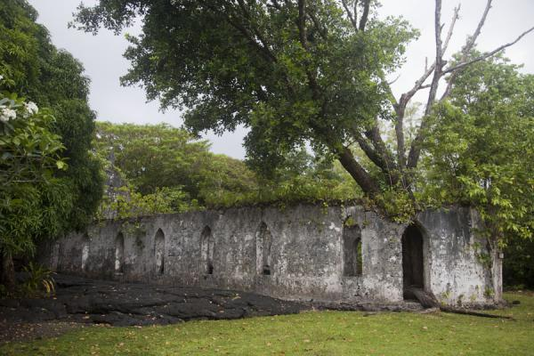 LMS church with a lava layer inside and trees growing into its walls | Campos de lava de Savai'i | Samoa