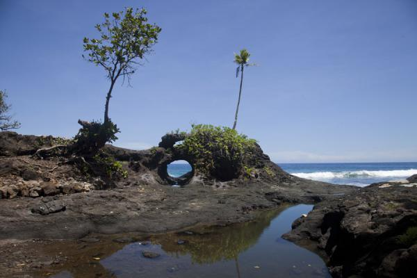 Foto de Samoa (Coastline lava rock formations at To Sua)