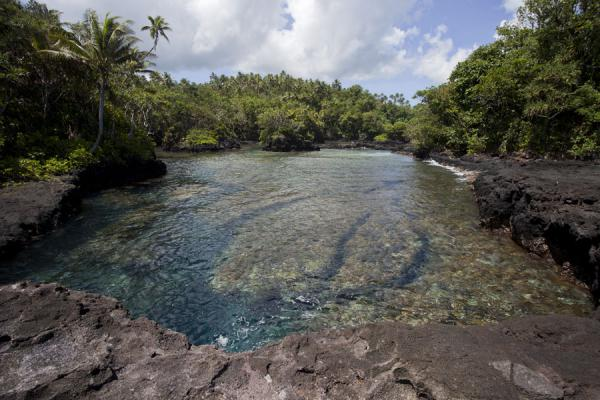 Picture of To Sua trench (Samoa): Rock pool at To Sua with trees around it