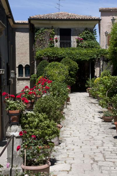 Foto van One of the many alleys with flowers in the historic centre of San MarinoHistorische stad van San Marino - San Marino