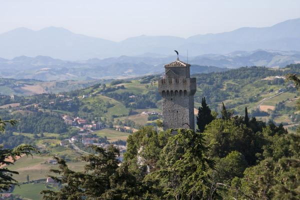 Picture of The Montale, or Third Tower, rising above the trees on top of Mount Titan