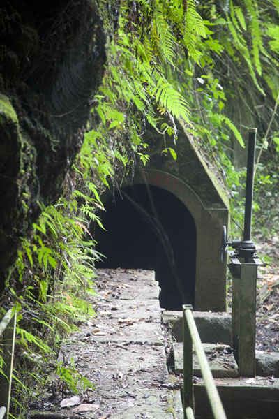 Picture of One of the seven tunnels we walked through on our way to Cascata Angolar - São Tomé and Príncipe - Africa