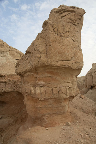 Foto van Erosion-shaped rock on Qara mountainAl Hofuf - Saoedi Arabië