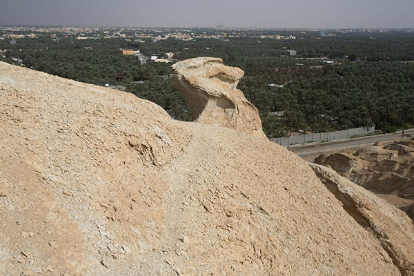 View from the top of Al Qara mountain with date palm oasis in the background | Al Qara mountain | Arabia Saudita