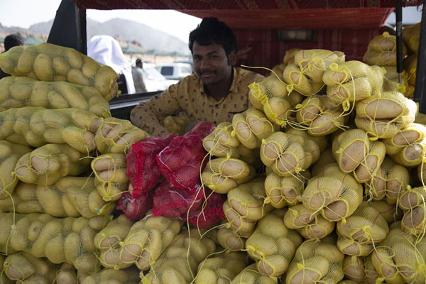 Selling potatoes from the back of a car | Mercado de los viernes de Hail | Arabia Saudita