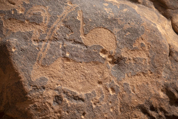 Foto di Oryx and birds carved on the rocksJubbah - Arabia Saudita
