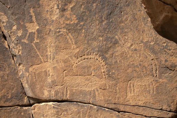 Picture of Rock carvings depicting ibex