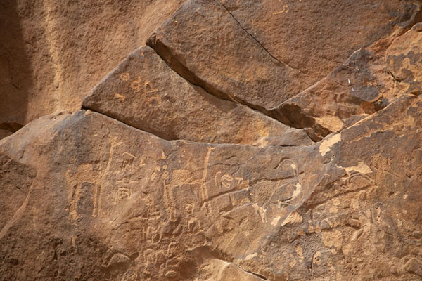 Carvings of camels and oryx on the rocks of Jubbah | Pétroglyphes de Jubbah | Arabie Saoudite