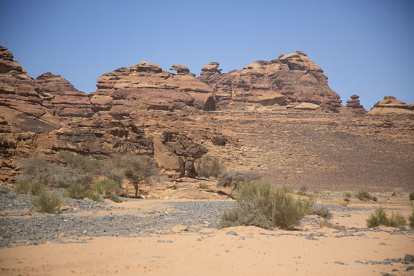 Picture of Wadi with trees and rocks near Abu RakahAbu Rakah - Saudi Arabia