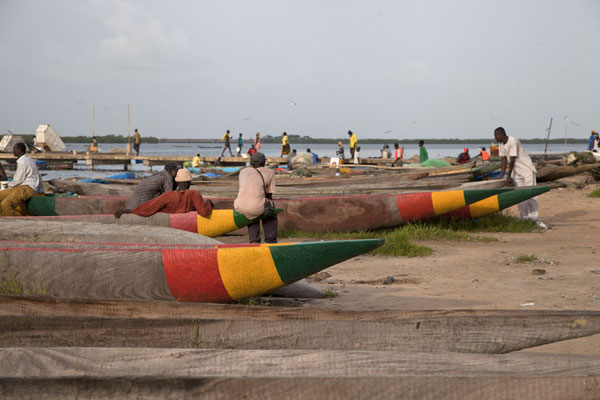 Foto di Senegal (Pirogues painted with the national colours on the beach of the river Casamance to the west of Ziguinchor)