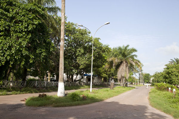 Charles de Gaulle Avenue is one of the spacious, tree-lined avenues in Ziguinchor | Ziguinchor | Senegal