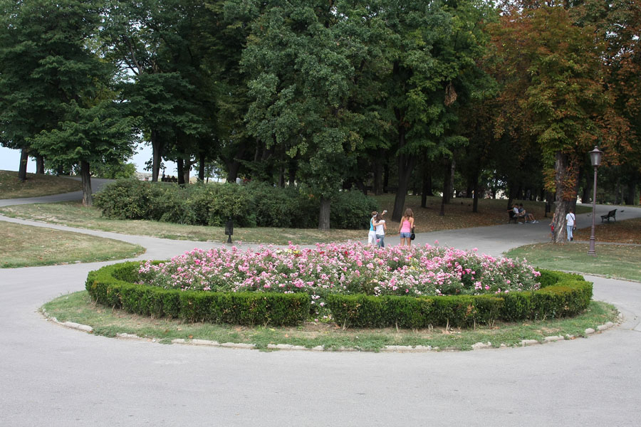 Flowers on one of the many quiet squares of Kalemegdan | Kalemegdan | Serbia