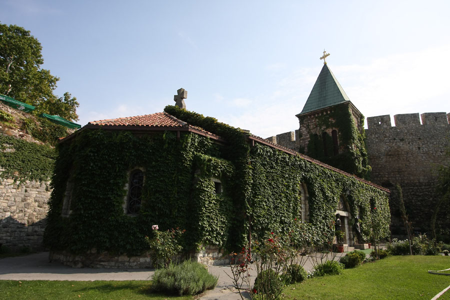 Picture of Rose church of Our Lady is overgrown by plants