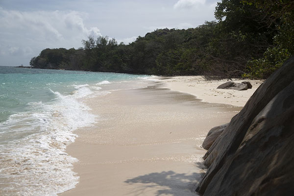 Picture of Curieuse island (Seychelles): Beach on the south side of Curieuse island