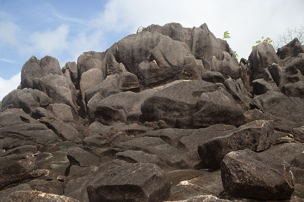 Picture of Curieuse island (Seychelles): Granite rock formations at the top of a hill on Curieuse island