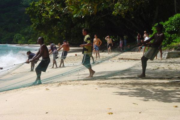 Picture of Fishermen pulling nets ashore in Seychelles