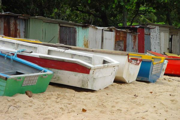 Picture of Seychelles Fishing (Seychelles): Colourful fisherboats in Seychelles