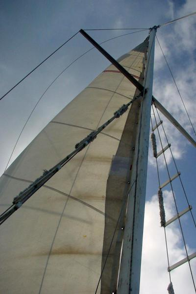 Picture of Schooner (Seychelles): Sail of schooner in Seychelles