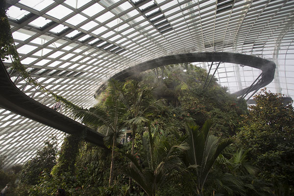 Foto de The inside of the CloudforestGardens by the Bay - Singapur