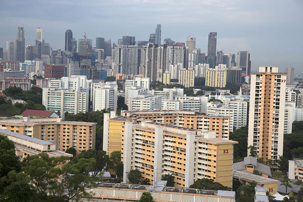 Singapore skyline seen from the summit of Mount Faber | Southern ridges | 新加玻
