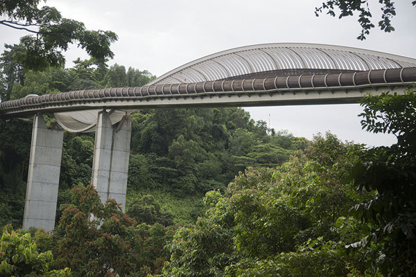 Henderson Waves seen from below | Southern ridges | 新加玻