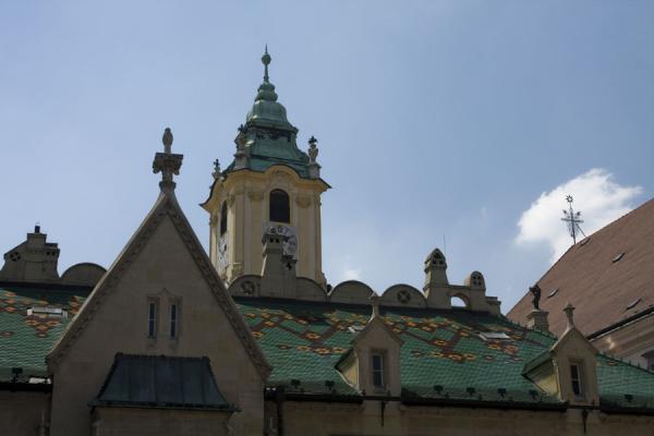 Green roof of Kostol Najsvátejšieho Spasiteľa | Bratislava Old Town | Slovakia