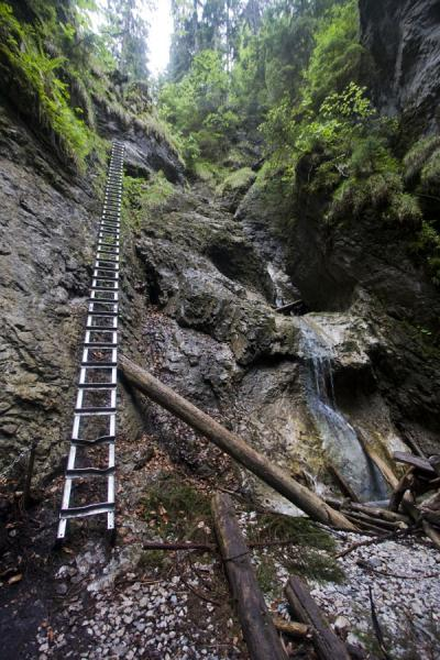 Metal ladder along a waterfall on a trail through Slovak Paradise | Slovak Paradise National Park | Slovakia