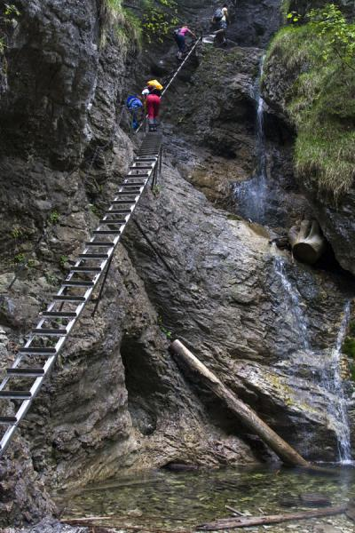Hikers on one of the many metal ladders next to a waterfall in Slovak Paradise | Slovak Paradise National Park | Slovakia