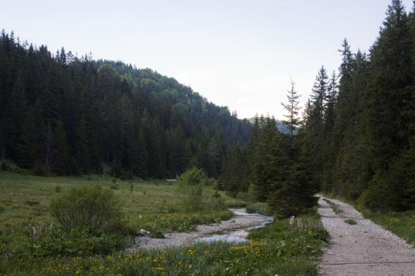 Trail in the southern part of Slovak Paradise | Slovak Paradise National Park | Slovakia