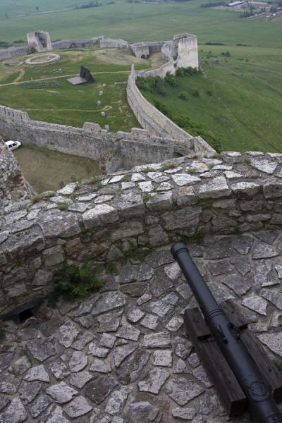 Picture of Spiš Castle (Slovakia): Cannon on a tower with defensive walls behind it