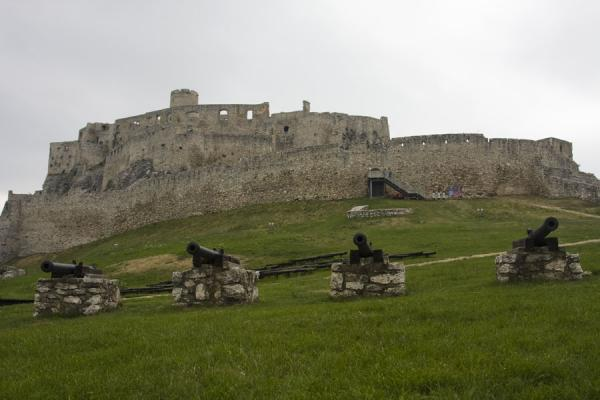 Picture of Spiš Castle (Slovakia): View of Spiš Castle from the grassy terrain below it, with cannons