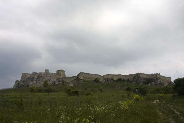 Picture of Spiš Castle (Slovakia): The large structure of Spiš Castle on top of the hill