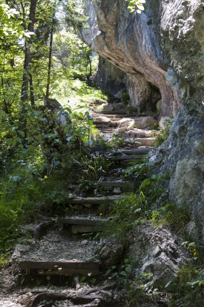 Stone stairs leading up a trail at Vrátna Valley | Vrátna valley | Slovakia